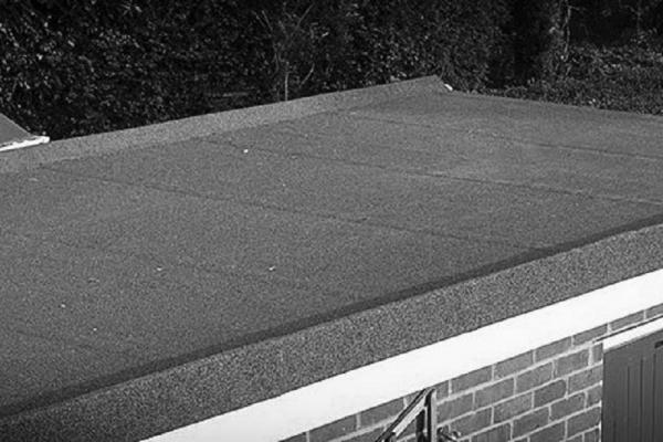 flat-roof19238A644-26CF-1614-6BF2-708AF5DBF821.jpg